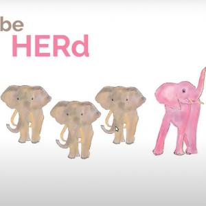 be herd 2